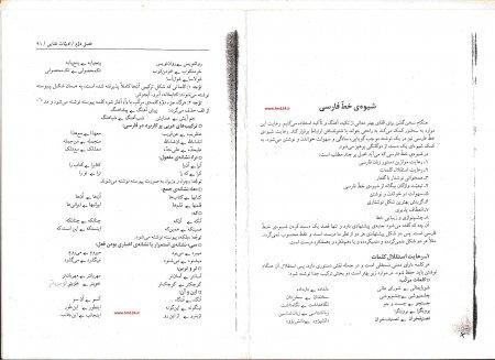 نمونه دیگر از نحوه نگارش صحیح زبان فارسی